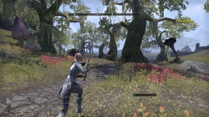 The Elder Scrolls Online: Tamriel Unlimited_20150623164743